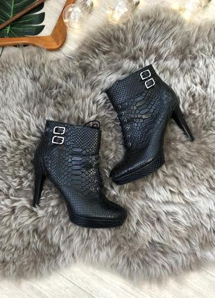 Полуботинки под рептилию|ботинки|туфли