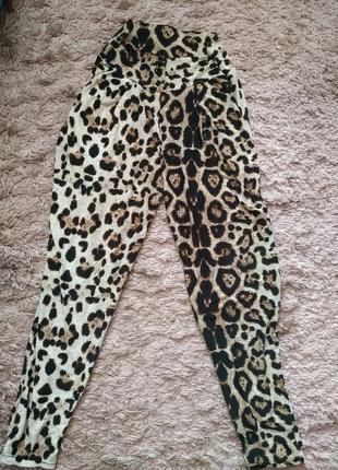 Трикотажные брюки под леопарда