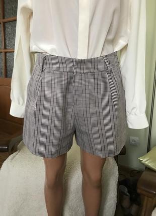 Отличные классические шорты