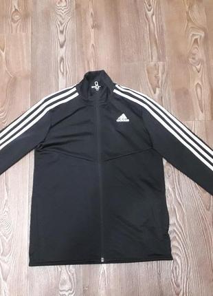 Спортивная кофта adidas original, новая