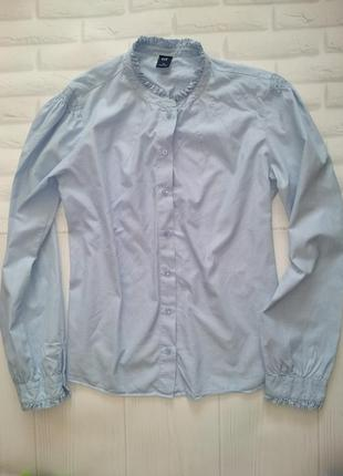 Блуза,рубашка нежно голубая