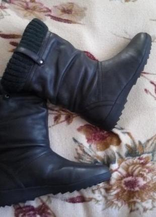 Новые кожаные сапожки 36рр