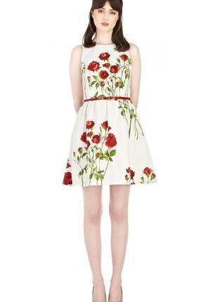 Акция на час! платье беби долл в розы