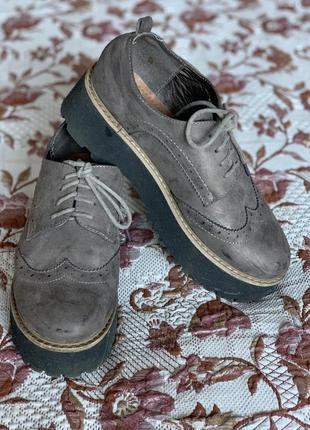 Туфлі оксфорди, броги