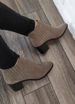 Стильные замшевые ботинки челси