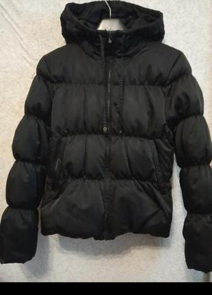 Куртка пуховик зимняя colin's