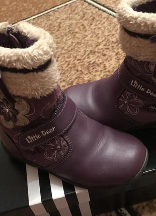 Ботиночки сапожки зимние