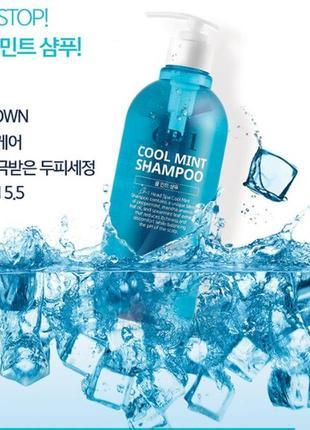 Освежающий мятный шампунь cp-1 cool mint shampoo 500ml esthetic house