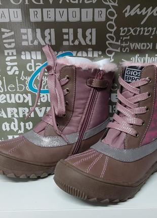 Демисезонные ботинки gioseppo