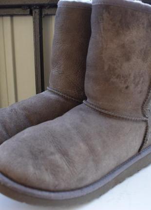 Зимние ботинки замшевые полусапоги овчина угги уги валенки ugg оригинал
