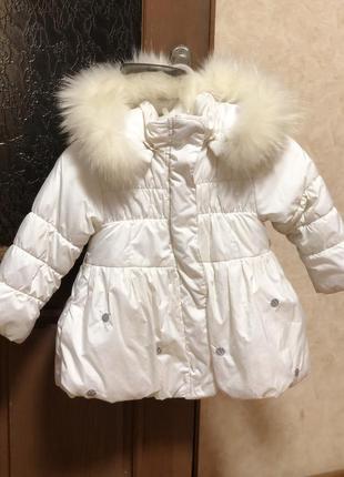 Зимняя курточка wojcik