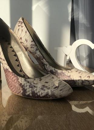 Туфли из эко-кожи со змеиным принтом