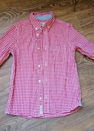 Рубашка hm на мальчика 6-7 лет 122 - 128 см