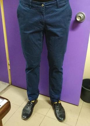 Брюки, штаны мужские blue motion