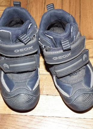 Деми ботинки geox в отличном сост, по стельке-16см