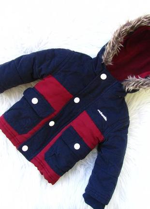 Стильная демисезонная  куртка с капюшоном mckenzie