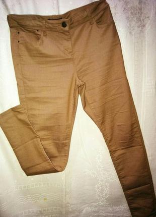 Джиггенсы джинсы брюки бермуды