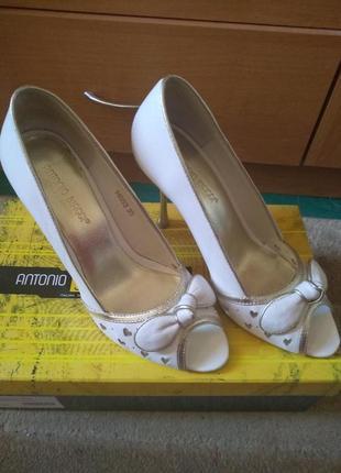 Стильные туфли известного бренда antonio biaggi