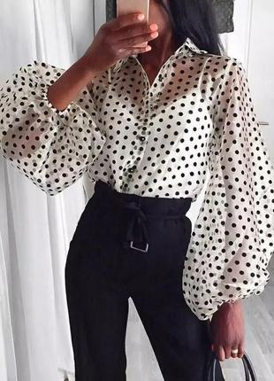 Шикарная рубашка в горох блуза4 фото