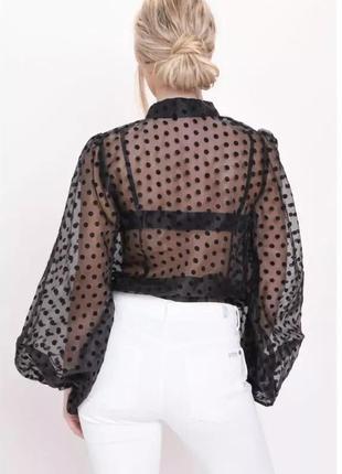 Шикарная рубашка в горох блуза2 фото