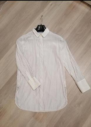 Базовая рубашка манго