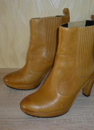 Кожаные ботинки ботильены ecco (эко) 40р.
