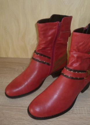 Демисезонные ботинки  полусапоги ctogogogo (стогогого)  40р