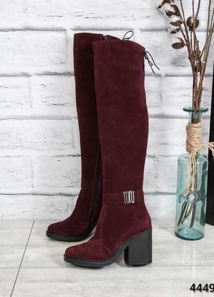 ❤ женские бордовые зимние замшевые сапоги ботфорты на шерсти на толстом каблуке ❤
