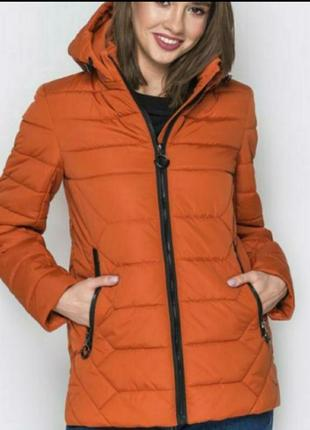 Куртка,дэми, размер 54