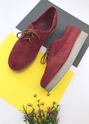 Замшевые туфли броги на шнуровке