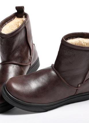 Мужские кожаные угги levis brown