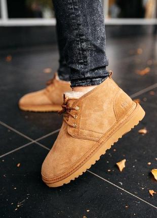 """Шикарные мужские теплые зимние ботинки ugg neumel """"chestnut"""""""