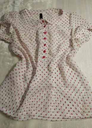 Блуза с круглым воротником
