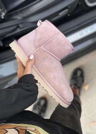 Ugg classic mini pink розовые низкие шикарные женские сапоги ботинки натуральные зимние