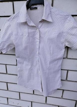 Две стрейчевые рубашки-поло