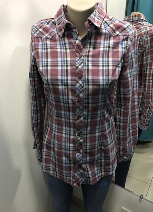 Рубашка в клеточку sheggy