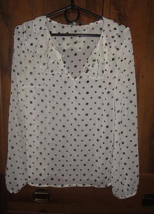Блузка прозрачная в горошек