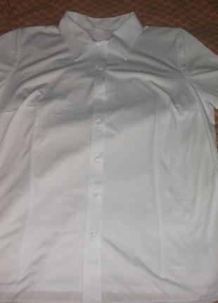 Рубашка,блуза белая большая