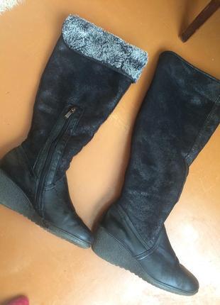 Сапоги женские ботфорты кожаные зимние