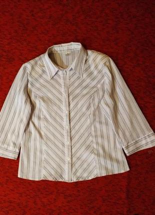 Блузка- рубашка, дрескод, carina exclusive
