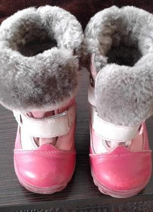 Ботинки зимние котофей кожа нат мех