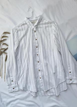 Рубашка, сорочка, полосатая рубашка, полосата сорочка, в полоску, белая, біла, h&m