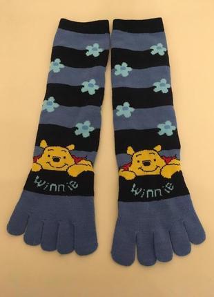 Супер   носки с пальчиками. гольфы,носки, гетры