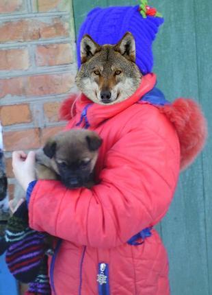 Куртка зимняя на девочку 8-9лет