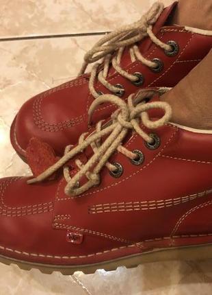 Брендовые ботинки kickers