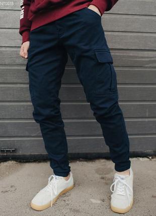 Теплые брюки staff cargo navy ts fleece