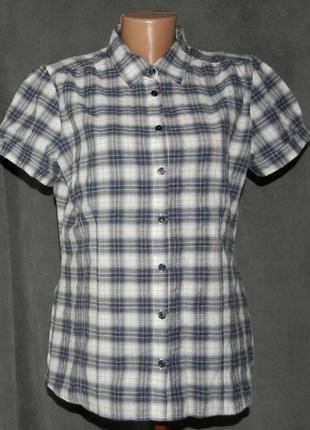 Рубашка next (16) большой размер