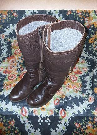 Сапоги кожаные зимние trend