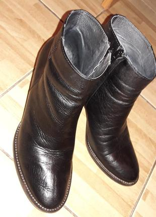 Ботинки hush демисезонные кожа
