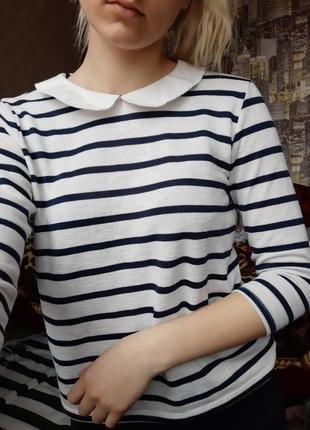 Кофта блуза рубашка с воротником в полоску